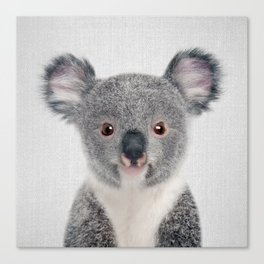Baby Koala - Colorful Canvas Print