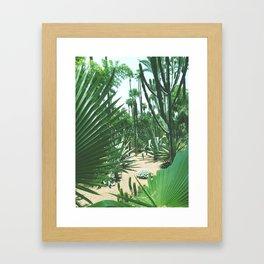Moroccan Gardens Framed Art Print