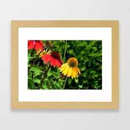 Yello and Red Framed Art Print