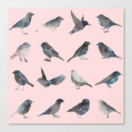 Sparrow Catalog Pink Canvas Print
