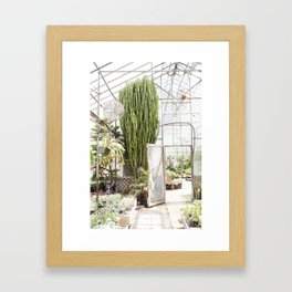 Giant Cactus in the Greenhouse Framed Art Print
