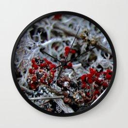 Devil's Matchstick Lichen Wall Clock