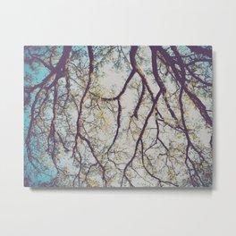 281 | austin Metal Print