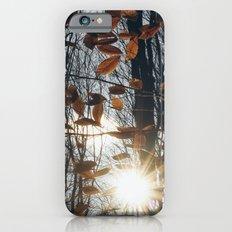 Fall Light iPhone 6s Slim Case