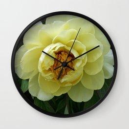 Tokyo Hama Rikyuu Koen Rose 3 Wall Clock
