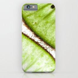 Macro photo of kiwifruit iPhone Case