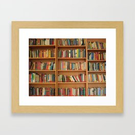 Bookshelf Books Library Bookworm Reading Framed Art Print