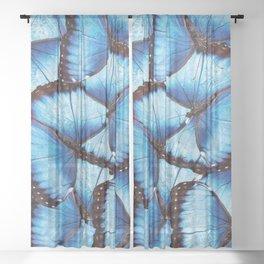 Blue Morpho Butterfly Sheer Curtain