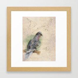 The Scientific Sketchbook: Passenger Pigeon Framed Art Print