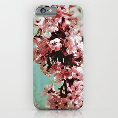Springblossom - photography Slim Case iPhone 6s
