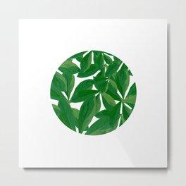 Summer Fresh Green Leaf White Background #decor #society6 #buyart Metal Print