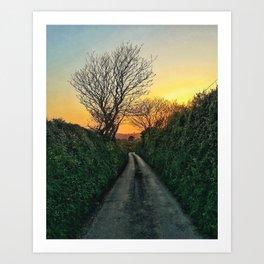 On the way to Caerhays Art Print