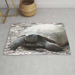 tortoise lunch time Rug