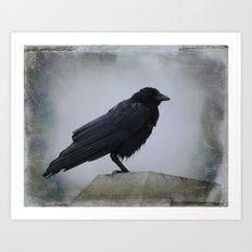 Wet Crow Art Print