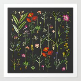 Exquisite Botanical Art Print