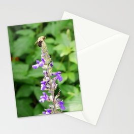 Garden Bee, 1 Stationery Cards