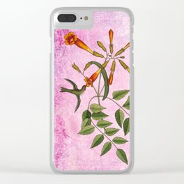 Hummingbird with Trumpet Vine, Vintage Natural History Collage Clear iPhone Case