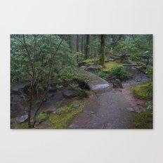 Zen Bridge Canvas Print