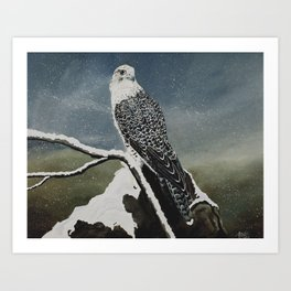 Northern Majesty Art Print