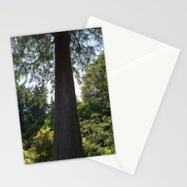Tree silhouette - Kubota Garden - Seattle Stationery Cards