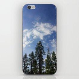 San Jacinto Beauty iPhone Skin