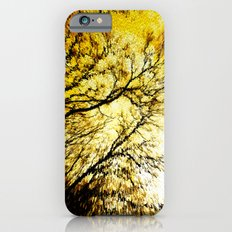Morning Tree Tops iPhone 6s Slim Case