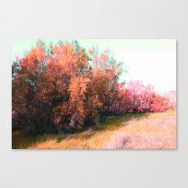 Spring pink landscape Canvas Print