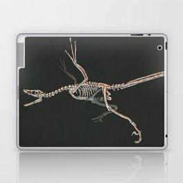 Microraptor Gui Skeletal Study (No Labels) Laptop & iPad Skin