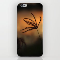 Silhouette1 iPhone & iPod Skin