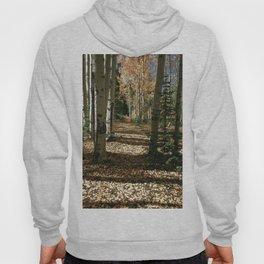 Fall Aspen Tree Hike by OLena Art Hoody