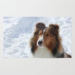 Sheltie in the snow Rug