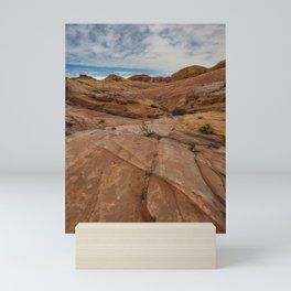 9758 Valley_of_Fire State Park, Nevada Mini Art Print