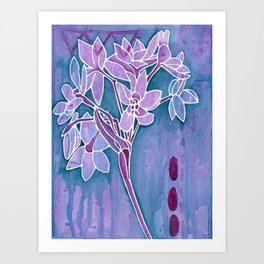 Paperwhites Art Print