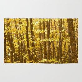 Autumn Splendor Rug