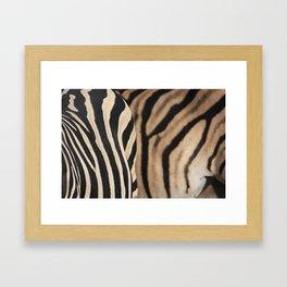 Herd Formation Framed Art Print