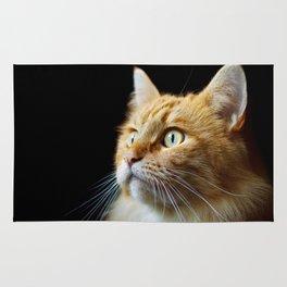 Portrait of ginger cat close-up. Rug
