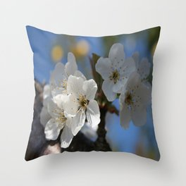 Close Up Of White Cherry Blossom Flowers Throw Pillow