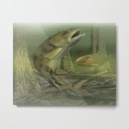 Backyard Fishing Metal Print