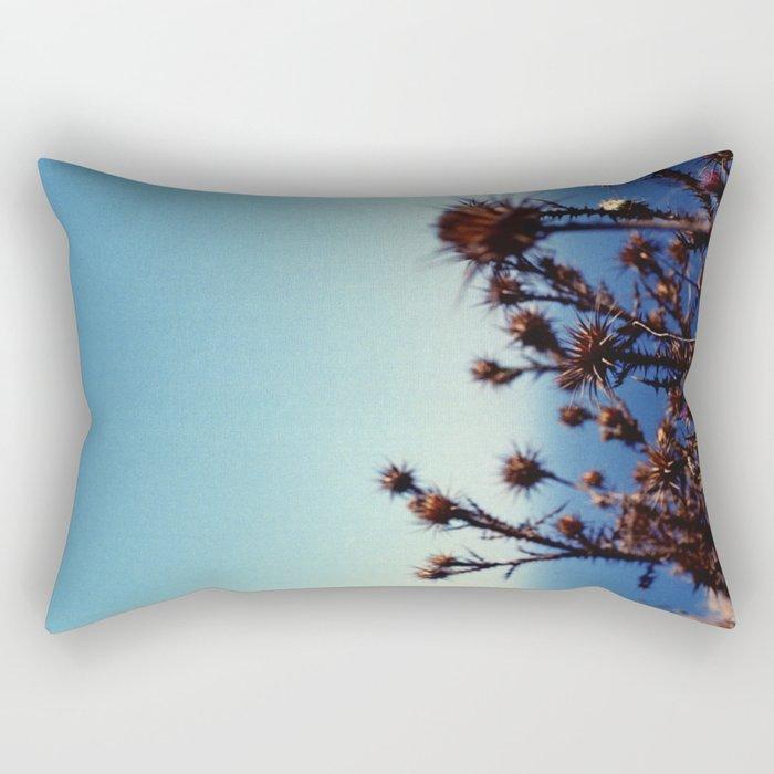 Sun-Bleached Blossom Rectangular Pillow