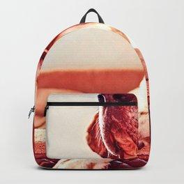 Photo Of Lovely Dog Backpack