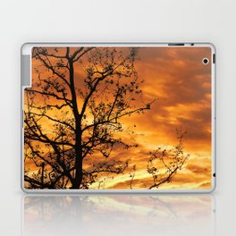 Universal Laptop & iPad Skin