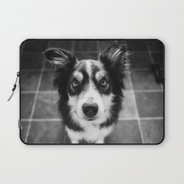 Tri-coloured border collie. Laptop Sleeve