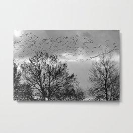 wildlife Metal Print