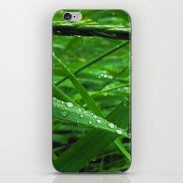 Montana Green iPhone Skin