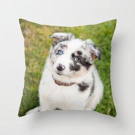 puppy Ben Throw Pillow