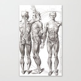 Doctor Grad Student Gift Ideas Bodies Medical Anatomy Drawing Canvas Print