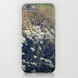 Rustic Field of Vintage Country Daisies iPhone Case
