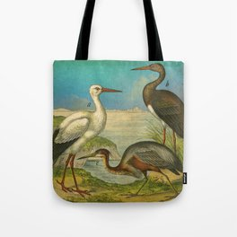 3 Waterbirds Tote Bag