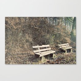 Strategically shaped logs Canvas Print