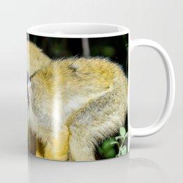 an Squirrel monkey Coffee Mug